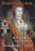 Waiting For Elizabeth: Love and Hate in Tudor Ireland