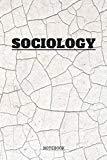 Notebook: I Love Sociology I am Sociologist Planner / Organizer / Lined Notebook (6