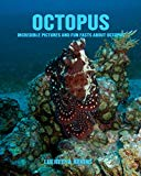 Octopus: Incredible Pictures and Fun Facts about Octopus