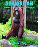 Orangutan: Incredible Pictures and Fun Facts about Orangutan