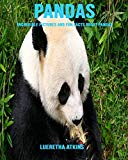Pandas: Incredible Pictures and Fun Facts about Pandas