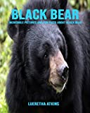 Black Bear: Incredible Pictures and Fun Facts about Black Bear