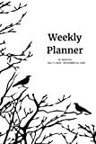 Weekly Planner: Crows; 18 months; July 1, 2019 - December 31, 2020; 6