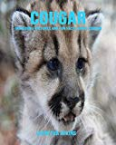 Cougar: Incredible Pictures and Fun Facts about Cougar