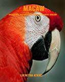 Macaw: Incredible Pictures and Fun Facts about Macaw