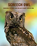 Screech owl: Incredible Pictures and Fun Facts about Screech owl