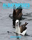 Albatrosses: Incredible Pictures and Fun Facts about Albatrosses