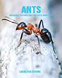 Ants: Incredible Pictures and Fun Facts about Ants