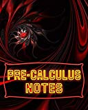 Pre-Calculus Notes: 123 Pages, Blank Journal - Notebook To Write In, 5x5 Graph Paper Alterna...