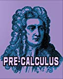 Pre-Calculus: 123 Pages, Blank Journal - Notebook To Write In, 5x5 Graph Paper Alternating W...