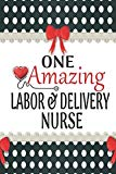 One Amazing Labor & Delivery Nurse: Medical Theme Decorated Lined Notebook For Gratitude And...