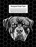 Hexagonal Graph Paper: Organic Chemistry & Biochemistry Notebook, Vibrant Rottweiler Dog Cov...