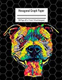 Hexagonal Graph Paper: Organic Chemistry & Biochemistry Notebook, Vibrant Pitbull Dog Cover,...