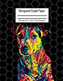 Hexagonal Graph Paper: Organic Chemistry & Biochemistry Notebook, Vibrant Jack Russel Terrie...