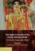 Right to Health at the Public/Private Divide : A Global Comparative Study