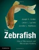 The Zebrafish: Atlas of Macroscopic and Microscopic Anatomy