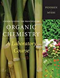 Understanding the Principles of Organic Chemistry: A Laboratory Course, Reprint (Available T...