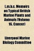 L.m.b.c. Memoirs on Typical British Marine Plants and Animals (Volume 16. Cancer)