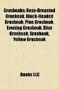Grosbeaks : Rose-Breasted Grosbeak, Black-Headed Grosbeak, Pine Grosbeak, Evening Grosbeak, ...