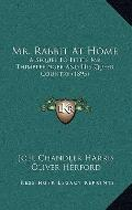 Mr Rabbit at Home : A Sequel to Little Mr. Thimblefinger and His Queer Country (1895)