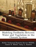 Modeling Feedbacks Between Water and Vegetation in the Climate System