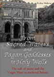 From Sacred Waters and Pagan Goddesses to Holy Wells:   The cult of saints and the Virgin Ma...