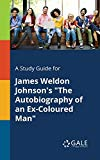 A Study Guide for James Weldon Johnson's