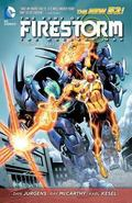 Fury of Firestorm: the Nuclear Men Vol. 3: Takeover (the New 52)