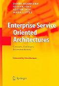Enterprise Service Oriented Architectures Concepts, Challenges, Recommendations