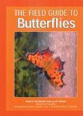 Field Guide to Butterflies