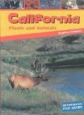 California Plants & Animals