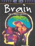 Brain Injury, Illness and Health