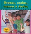 Brazos, Codos, Manos Y Dedos / Arms, Elbows, Hands and fingers