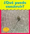 Que Puede Construir?/What Can Build?