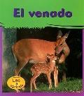 Venado/deer