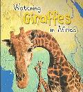 Watching Giraffes in Africa