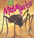 Mosquito / Mosquito
