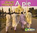 A Pie/on Foot