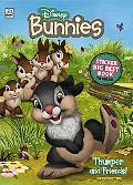 Disney Bunnies Big Best Book to Color with Stickers