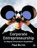 Corporate Entrepreneurship Building An Entrepreneurial Organisation