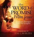 Words of Promise from Jesus Dramatic Passages from the Gospels