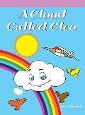 A Cloud Called Cleo