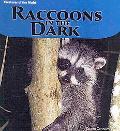 Raccoons in the Dark (Creatures of the Night)