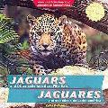 Jaguars and Other Latin American Wild Cats / Jaguares y otros felinos de Latinoamerica (Anim...