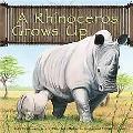 Rhinoceros Grows Up