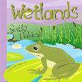 Wetlands Soggy Habitat