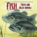 Fish: Finned and Gilled Animals (Amazing Science)