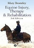 Equine Injury, Therapy Rehabilitation