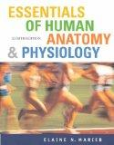 Essentials of Human Anatomy and Physiology: AND Prentice Hall Real Nursing Skills Intermedia...