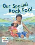 Our Special Rock Pool (Engage Literacy: Green)